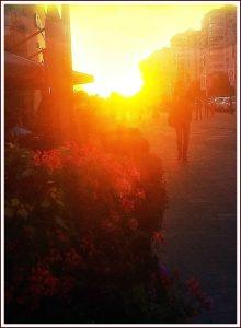Солнце.Фото: Наталья Заболотнева.