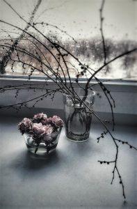 Фото: Елена Стебницкая.